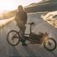 Vélo électrique Riese & Müller Packster 40 City (modèle 2018)