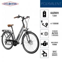 CycleDenis ONE 28 - Taille T48L - Gris - Vélo Electrique Moteur Pédalier