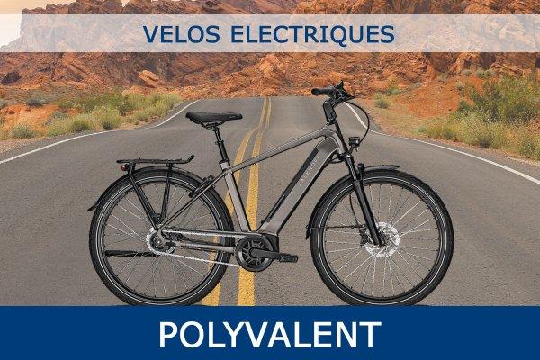 Velo Electrique Polyvalent Avec Certificat de Conformite CycleDenis Ac-Emotion