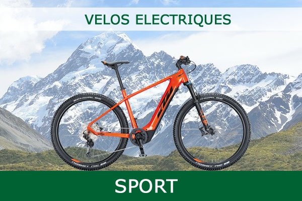 Velo Electrique Sport Avec Certificat de Conformite CycleDenis Ac-Emotion